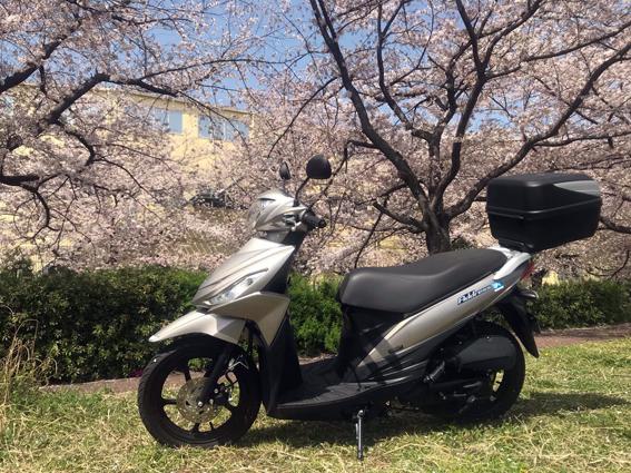 桜の前にアドレス110